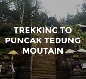 Activities Trekking to Puncak Tedung Mountain at Hotel Tugu Bali